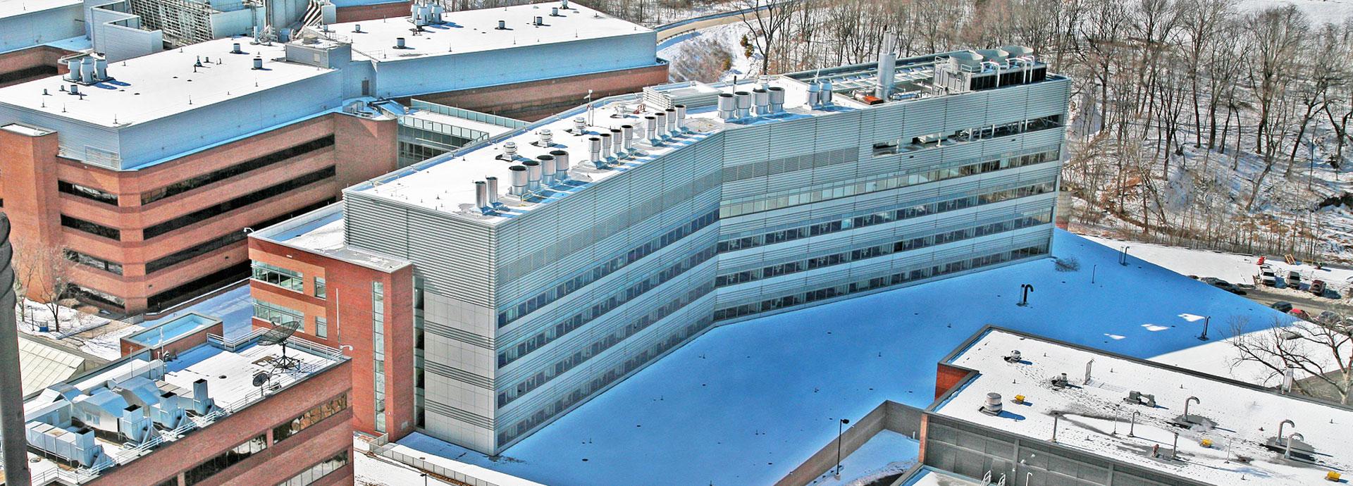 Pfizer New Research Building Cc Tarlton